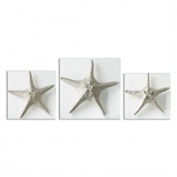 Silver Starfish Wall Art