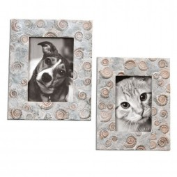 Spirula Photo Frames S/2 18566