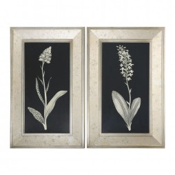 Antique Floral Study Framed Art