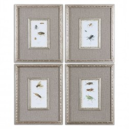 Insect Study Framed Art