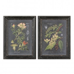 Midnight Botanicals Wall Art S/2 56053