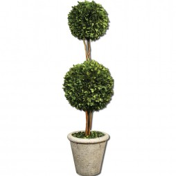 Two Sphere Topiary Preserved Boxwood 60106