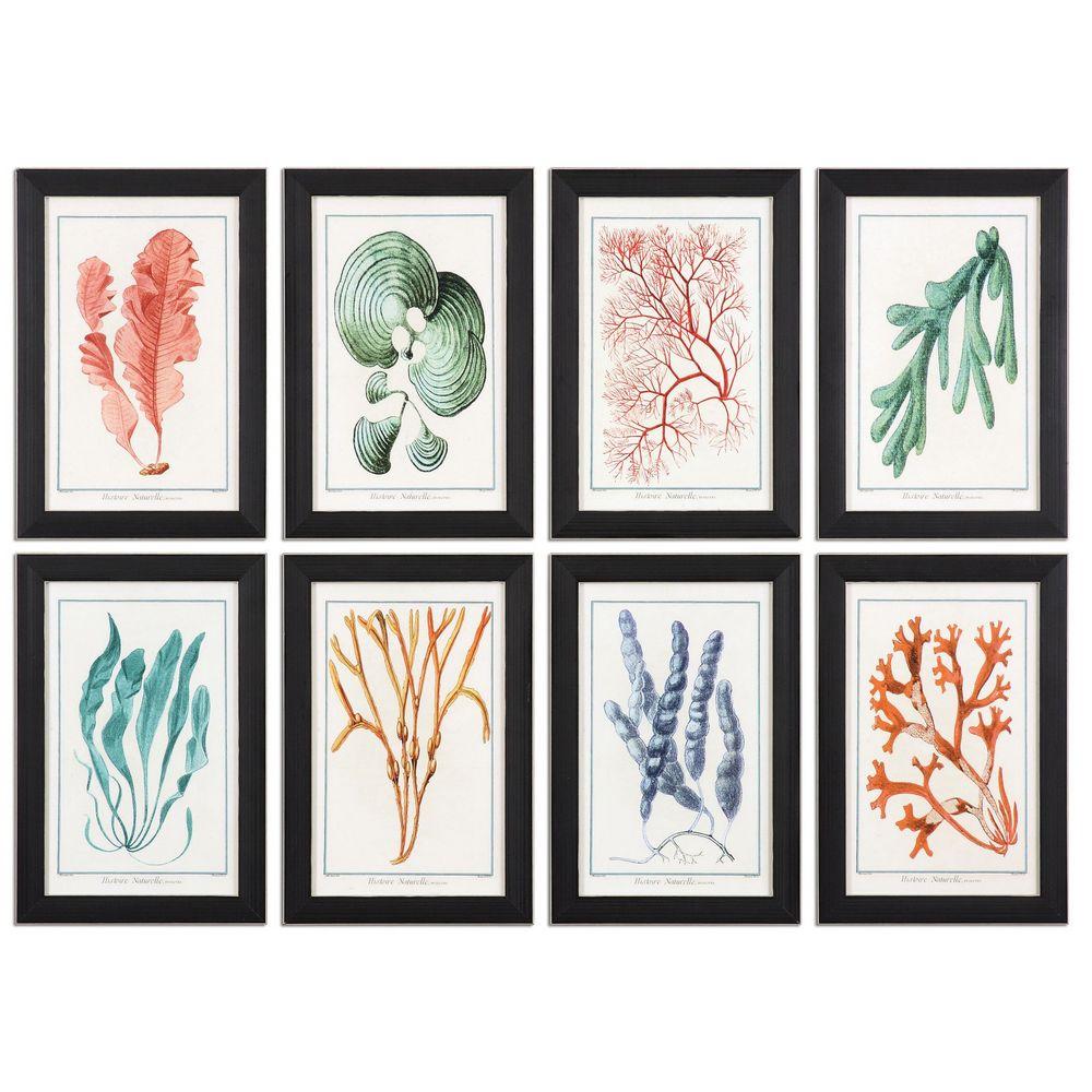 Uttermost Colorful Algae Framed Art S 8 33621