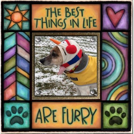 The Best Things in Life are Furry Picture Frame - Macone Creek SAF49